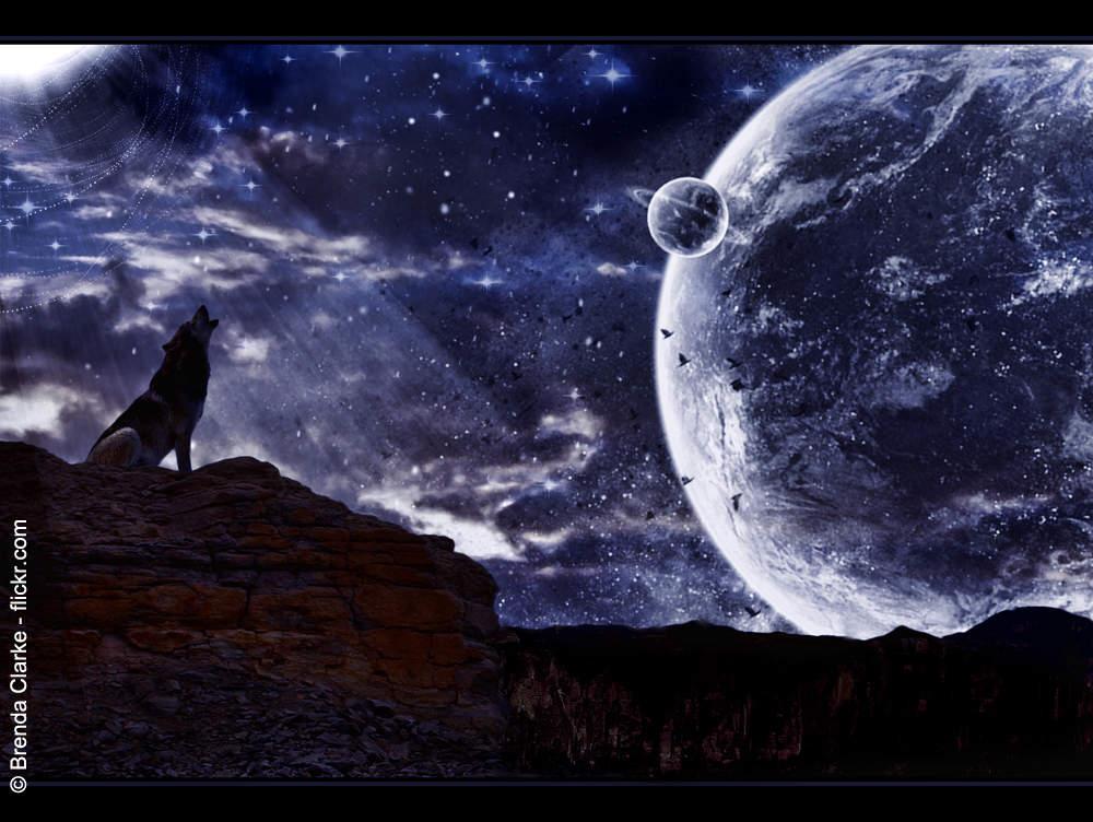 louve hurlant dans la galaxie