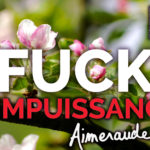 Fuck you impuissance !